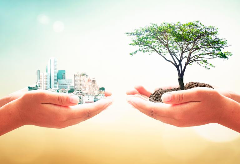5 modelos de empresas sostenibles para replicar y crear un mejor futuro